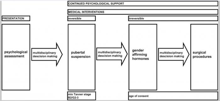 schéma illustration transgenre adolescents